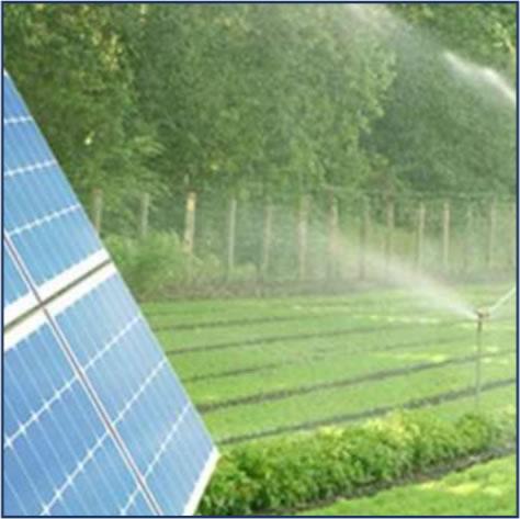 Landwirtschaft und erneuerbare Energien
